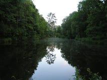 Pond in Dębina Stock Photos