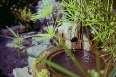 Pond detail in Japanese zen garden stock photos