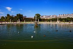Louvre pond in the gardens, paris. Pond with ducks in the gardens of Louvre palace museum Paris, France Royalty Free Stock Photography