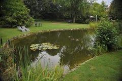 Pond em um parque da cidade com um lírio Fotos de Stock
