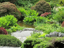 Pond in an English Garden. Pond with heavy shrubbery and bush coverage and a path Royalty Free Stock Image