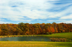 Pond in fall Stock Image