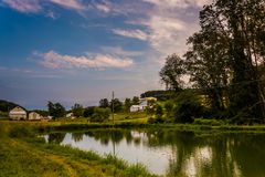Pond on a farm in rural York County, Pennsylvania. Royalty Free Stock Image
