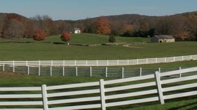 Pond Farm (5 of 9). A view or scene on the farm stock footage