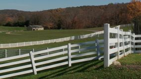 Pond Farm (6 of 9). A view or scene on the farm stock footage