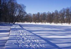 Pond in February. Winter, February. City park in sunny day, St.Petersburg royalty free stock photos