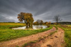 Pond fields. Pond in the fields in a gloomy November day Royalty Free Stock Photos
