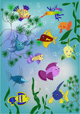 Pond fishes () Stock Image