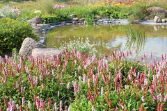 Pond and flower bed Royalty Free Stock Photos