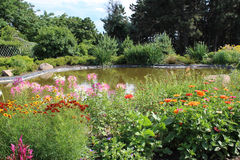 Pond and flower bed Royalty Free Stock Image
