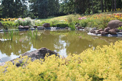 Pond and flower bed Stock Photography
