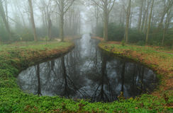 Pond in the fog. Mysterious mood at a pond in a landscape park on a foggy, spring day Royalty Free Stock Photo