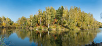 Pond in a forest in autumn. Stock Image