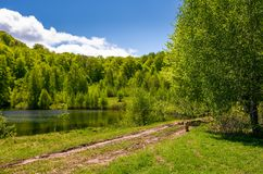 Pond among the forest on fine spring day. Lovely nature scenery in mountains Stock Photo