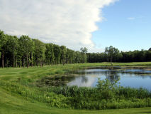 Pond and forest golf Stock Photos