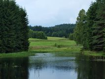 Pond , forest, meadow. Pond and forest and meadow. South Bohemia stock photos