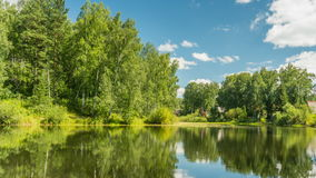 Pond in forest under clouds stock footage