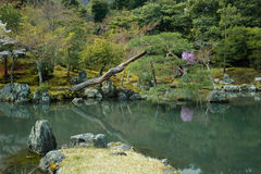 Pond in a formal Japanese garden Royalty Free Stock Image