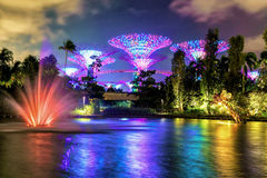 Pond with fountain and Supertree grove at Gardens by Bay Stock Image