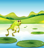 A pond with a frog jumping stock illustration