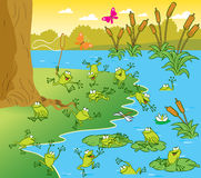 Pond with the frogs. The illustration shows a pond with frogs on a sunny summer day. Picture made in cartoon style Stock Photography