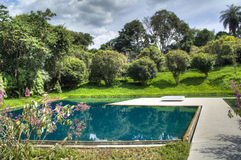 Pond in the garden. In Inhotim, Brazil Royalty Free Stock Photo