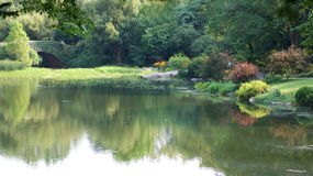 Pond and gardens. Beautiful colourful gardens and pond Royalty Free Stock Photo