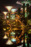 Pond at Gardens by the Bay Royalty Free Stock Image
