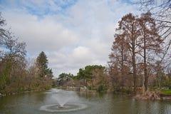Pond at giardini margherita bologna Royalty Free Stock Photo