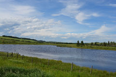 Pond on Grassy Farmland. Nice pond on prairie farm grasslands on a beautiful day Stock Photo