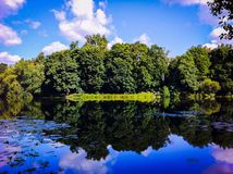 Pond in the green wood, summer Royalty Free Stock Images