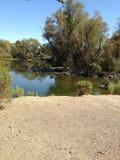 Pond. At Heather Farm Park, Walnut Creek Stock Photography