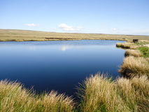 Pond on Hebden Stock Images