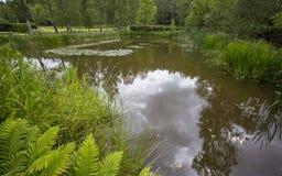 Pond Royalty Free Stock Photos