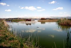 The Pond I (Mogan Park, Ankara/Turkey) Stock Photography