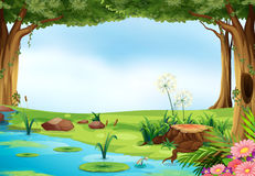 Pond. Illustration of an outdoor scene of a pond Royalty Free Stock Images