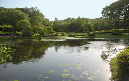 Pond in Imperial Palace Gardens Stock Image