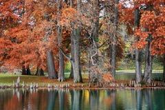 Free Pond In Autumn Royalty Free Stock Photos - 12927578