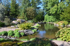Pond In Garden Royalty Free Stock Photo