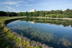 Free Pond In Park Stock Photography - 13010642