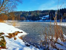 Free Pond In Winter Royalty Free Stock Photos - 110383938