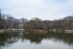 Pond inside Changgyeong palace area. The pond inside seasoning palace area in Seoul, South Korea Stock Photography