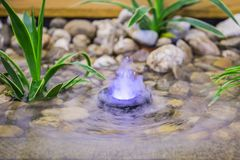 A pond in the interior, a small fountain with color illumination, landscape design of a small pond.  stock image