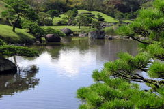 Pond in japanese garden Stock Image