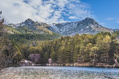 Pond in LA BARRANCA GUADARRAMA Spain. Pond in the sierra of guadarrama in the place called LA BARRANCA Spain Stock Images