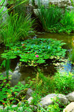 Pond landsaping Royalty Free Stock Images