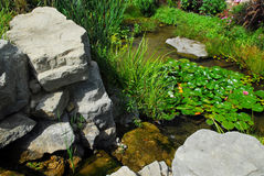 Pond landscaping Stock Photography