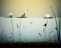 Free Pond Life, Under The Water, River`s Animal, Shadows, Black And White, Royalty Free Stock Photo - 115318975