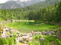 Pond of Lime. A remote pond in the Bavarian Alps of Southern Germany stock photo