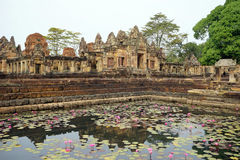 Pond with lotuses Royalty Free Stock Image